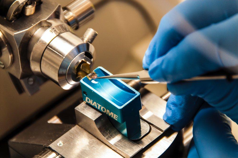 Höga krav på kvalitativa medicintekniska produkter